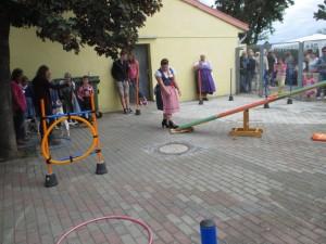 Tierheimfest 2015 015